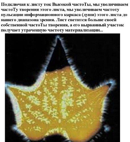 Новые картинки в мироздании 0_9872a_29954022_L