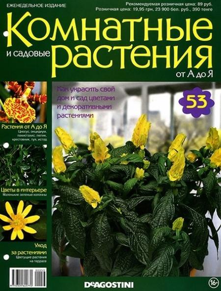 Журнал: Комнатные и садовые растения от А до Я №53 (2015)