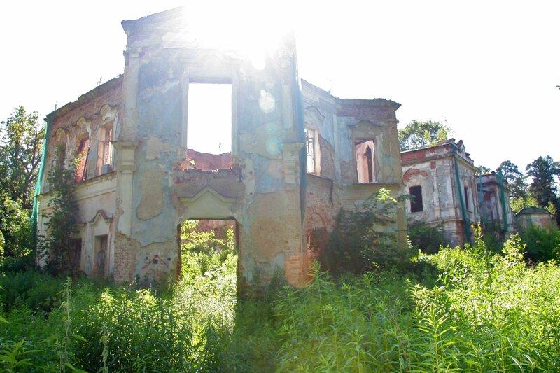 Николо-Прозорово, Руины усадьбы