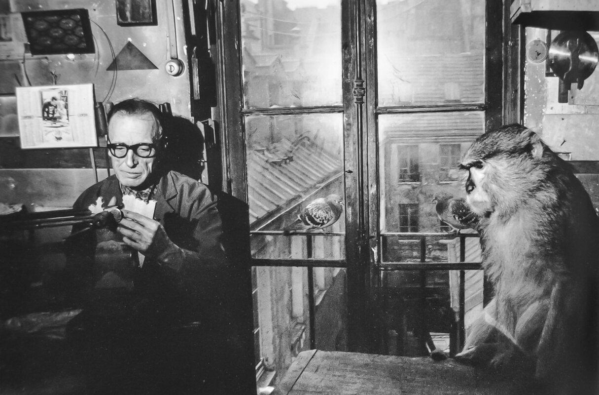 1970. Месье Баэз и Медведь