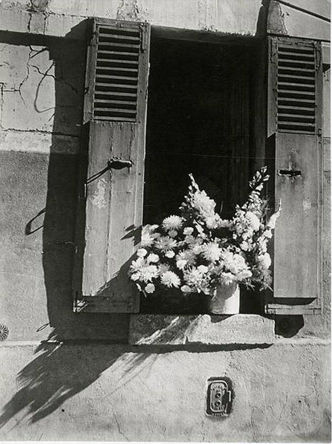 1946. Белый букет, пассаж Даро