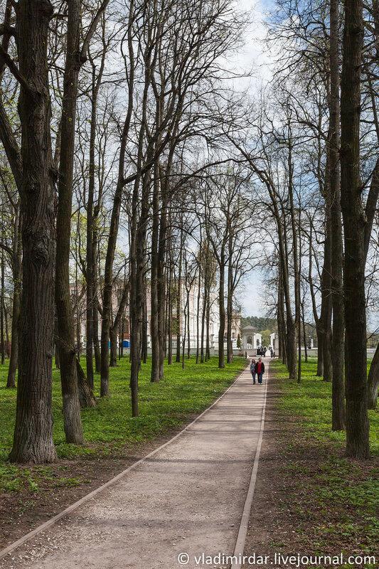 Липовая аллея в парке усадьбы Дубровицы