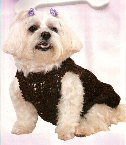 Одежда для животных: коричневое платье для собаки