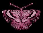 «летающая бабочка»  0_64e7b_86408693_S