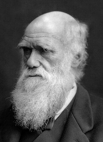 Правила жизни. Чарльз Дарвин