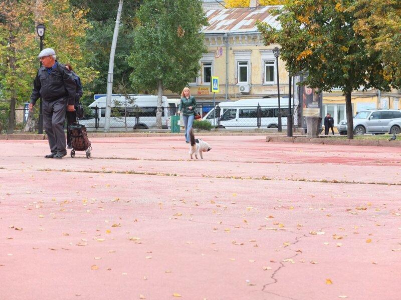 Прогулка с Сейлором, столовая и Самарка 010.JPG