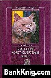 Книга Британские короткошерстные кошки pdf 2,1Мб