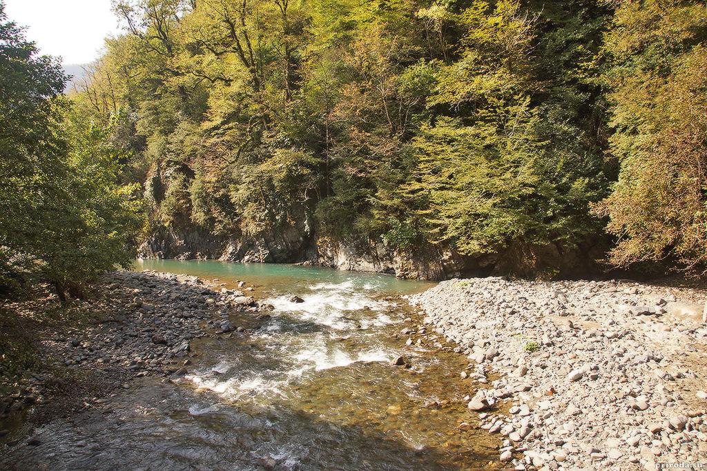 Бурный участок русла реки Гумиста.