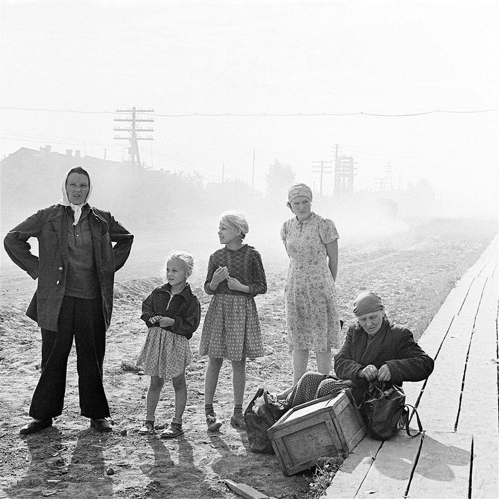 1964. Переселенцы