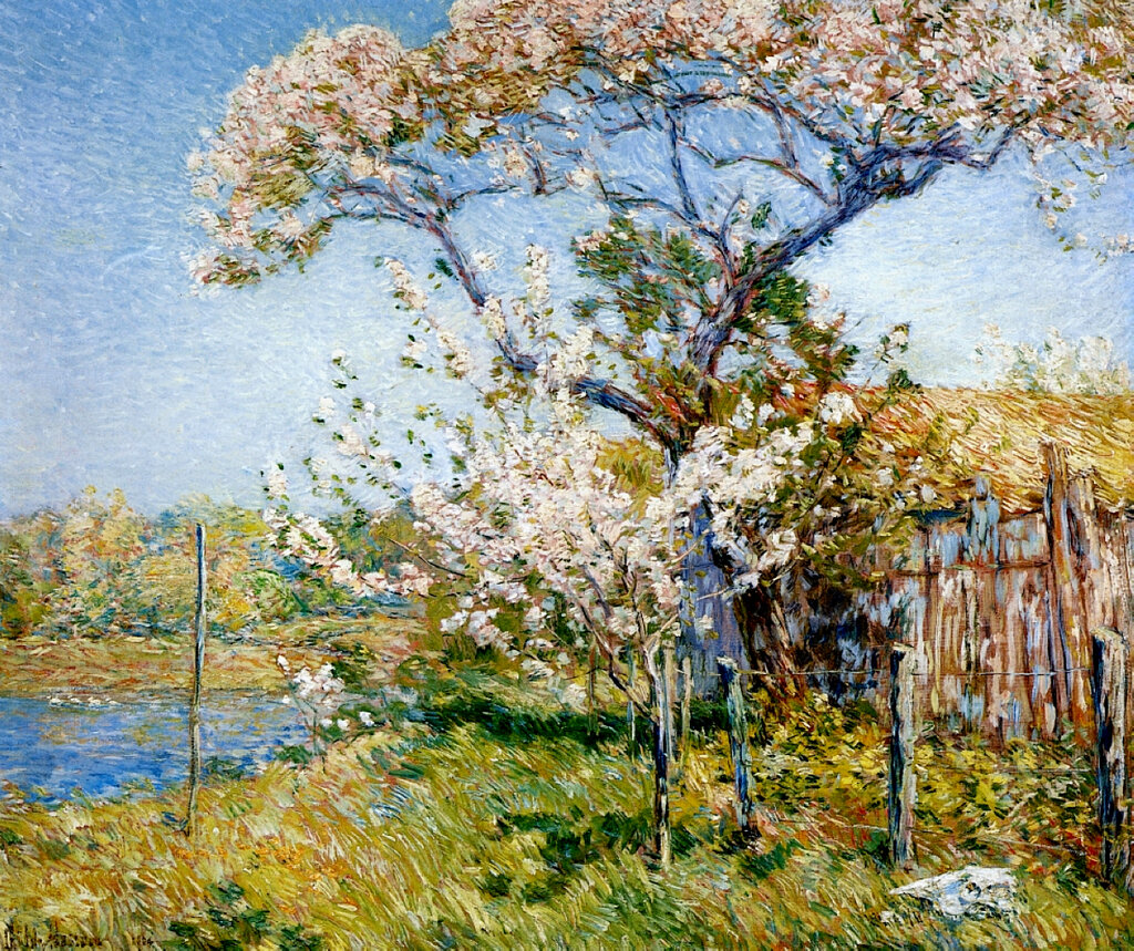 Apple Trees in Bloom, Old Lyme, 1904.jpeg
