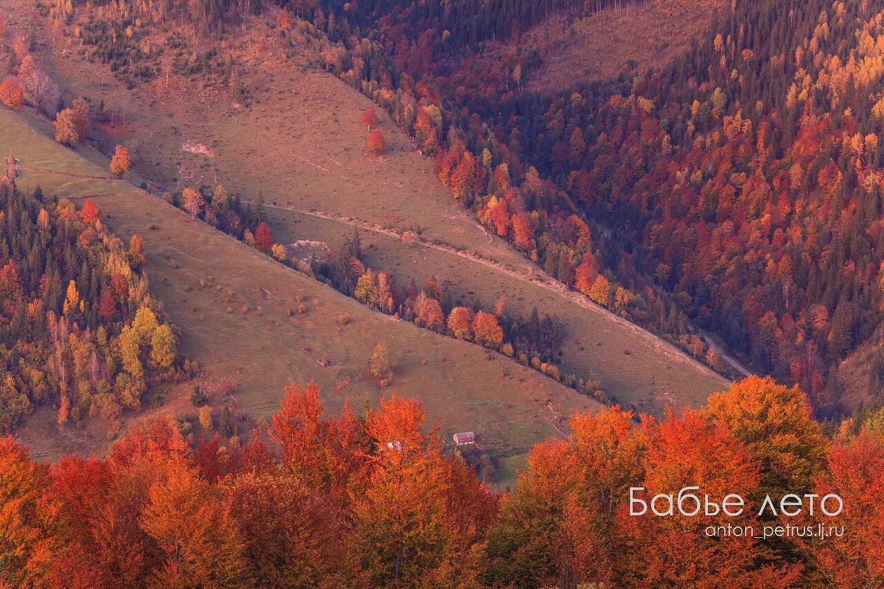 Карпаты, осенний пейзаж