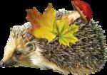 lepetitscrap_autumnsweetness_el (17).png