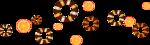 «оранжевый мир»  0_6d6e0_ea3a76e2_S