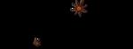 «оранжевый мир»  0_6d72c_460c8226_S