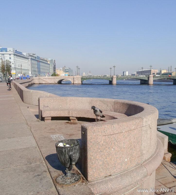 Наглая ворона на фоне Сампсониевского моста