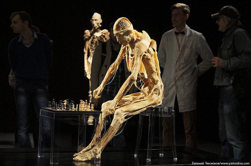 10. Афимолл. Тайны тела. 04.09.14.61..jpg