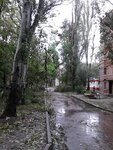 http://img-fotki.yandex.ru/get/5112/38030884.1d/0_e2bce_d8775914_S.jpg