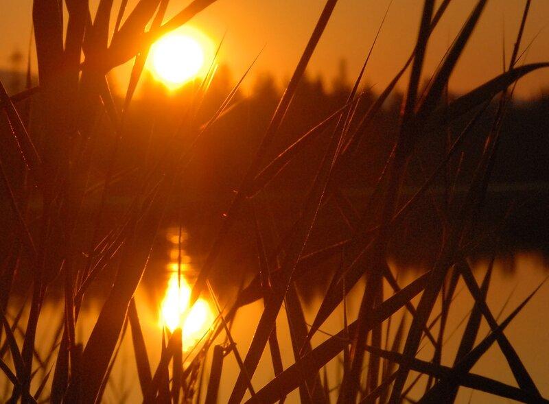Озеро Щучье. Ослепительное полуночное солнце. 00:21