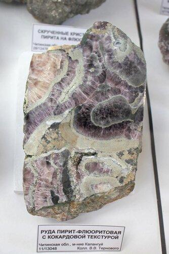 Руда пирит-флюоритовая с кокардовой текстурой