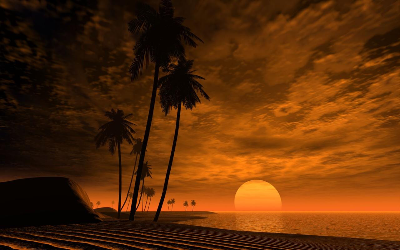 Закат в Африке, море и пальмы