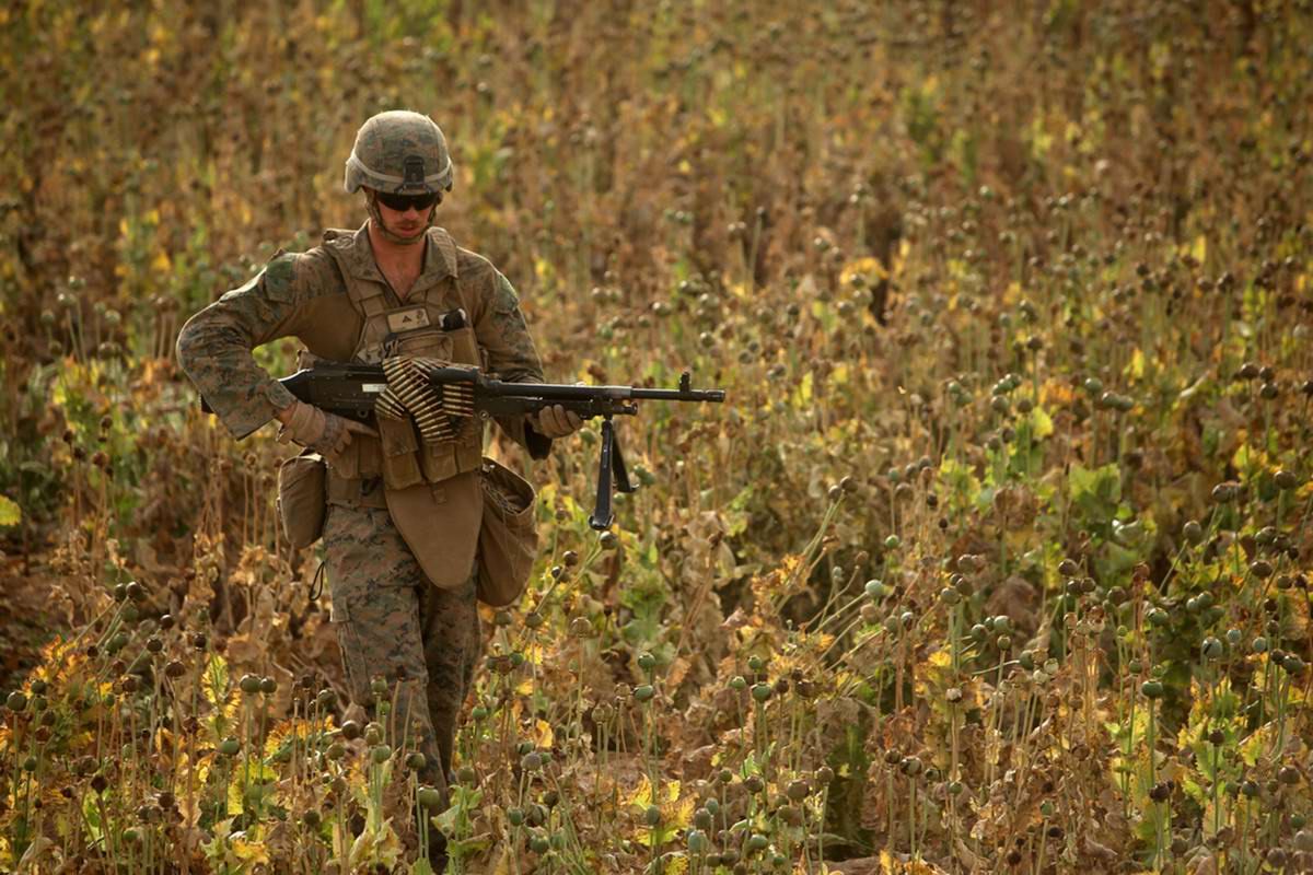 Посреди маковых полей Афганистана - фотографии военнослужащих корпуса морской пехоты США (36)
