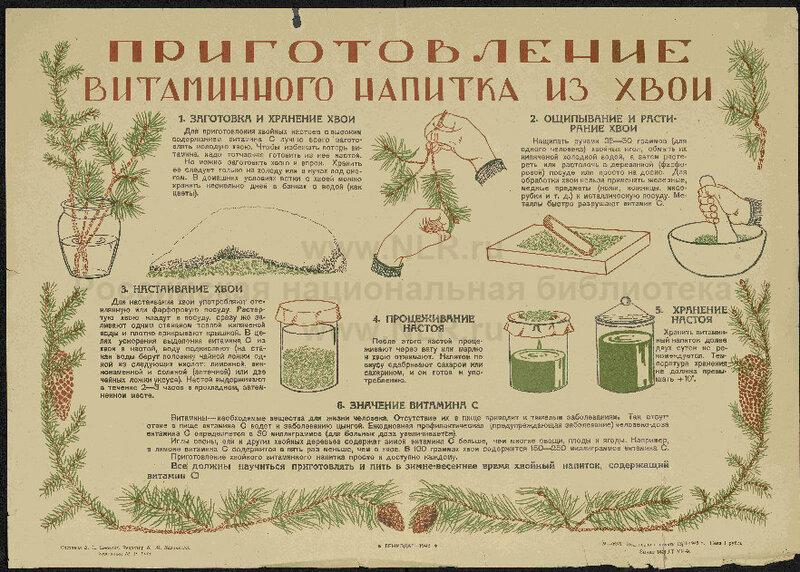 1943 Приготовление витаминного напитка