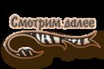 http://img-fotki.yandex.ru/get/5112/86493210.49/0_b222e_84c7e7cc_S.png