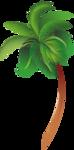 пальмы море (13).png