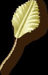 NLD Fabric leaf sh (2).png
