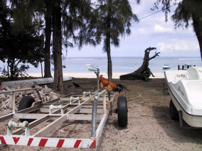 mauritius 050.jpg