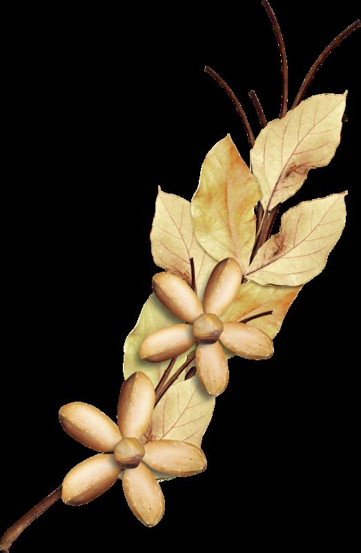 Carena_Autumn Crunch_42.png