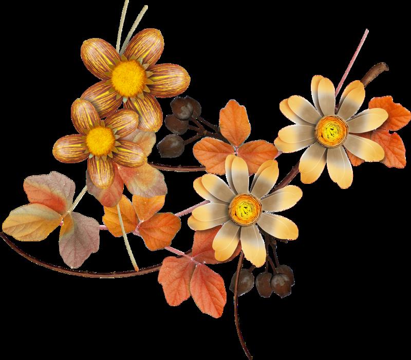 Carena_Autumn Crunch_44.png