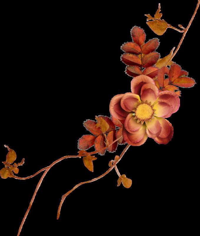 Carena_Autumn Crunch_70.png