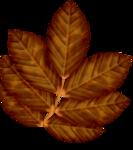 FD-BC-AutumnDay-Elements34.png