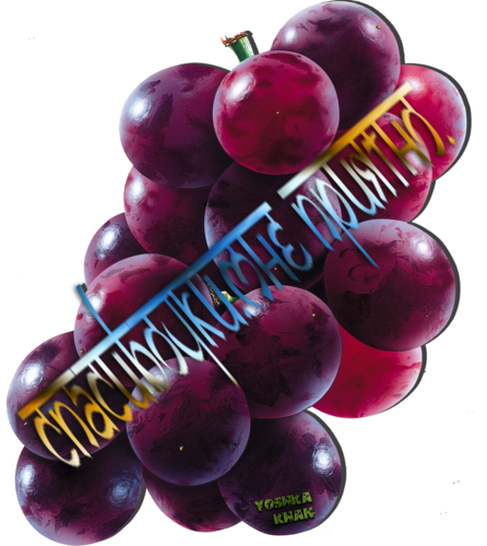 grape_PNG2979.png