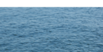водная поверхность.png