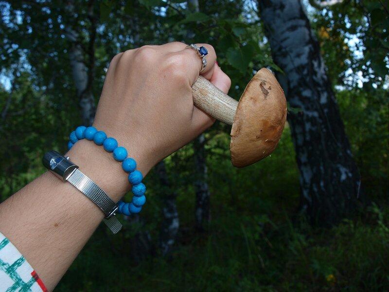 Клубничные поляны и грибные леса в окрестностях Новосибирска. WOW 30 Май 2015 22:59 двенадцатое