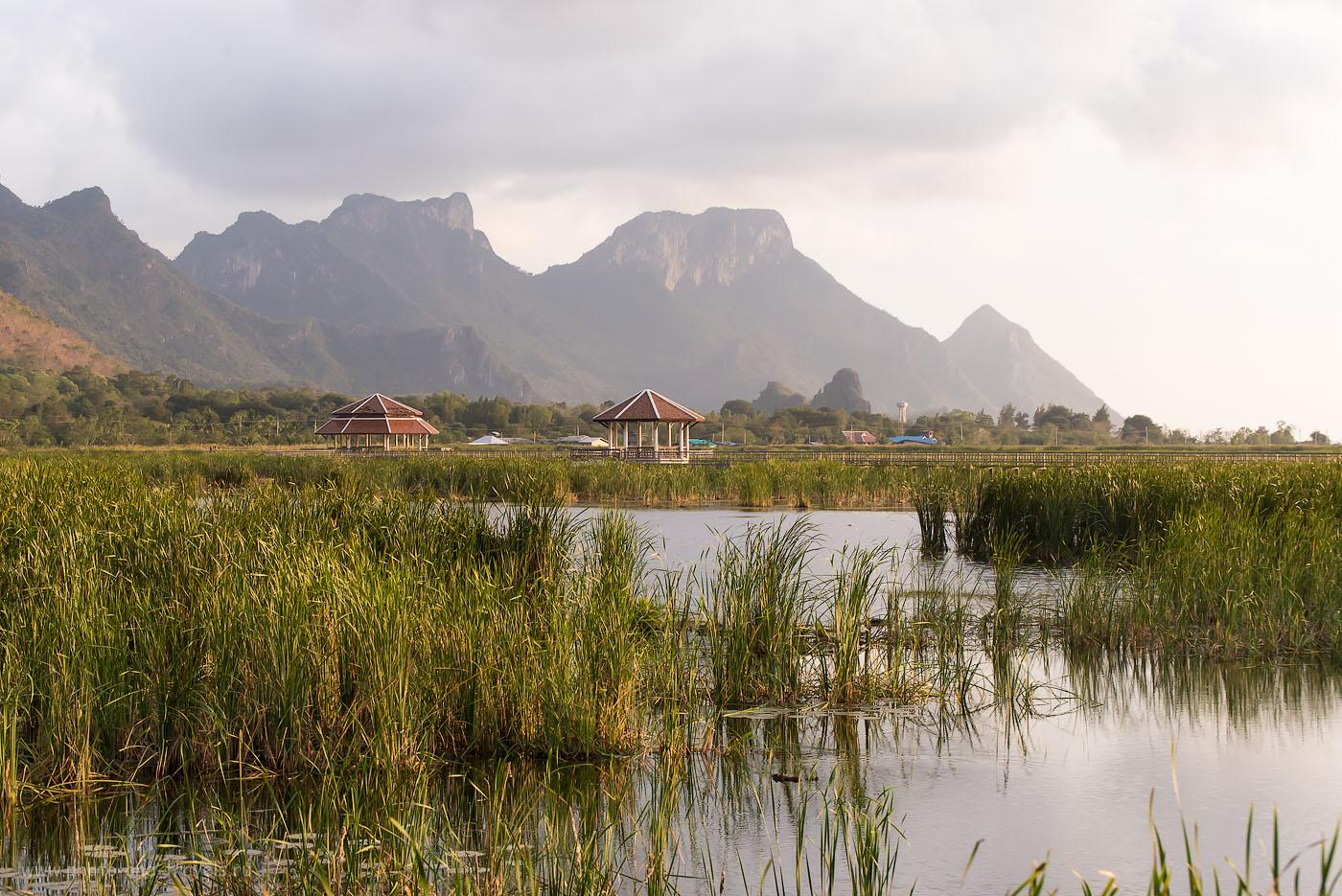 Фотография 17. Величественный пейзаж парка Сам Рой Йот (парк 300 вершин). Лотосовое болотоThung Sam Roi Yot  (100, 82, F=9.0, 1/320 телеобъектив Nikkor 70-300)
