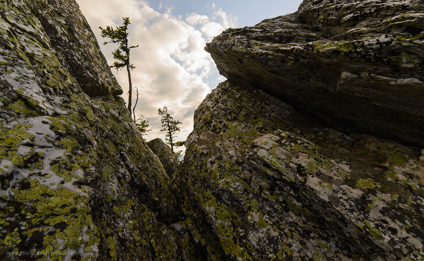 19. Лето в Башкирии. Поход на гору Малиновая. В суровых условиях (160, 14, 8.0, 1/250)