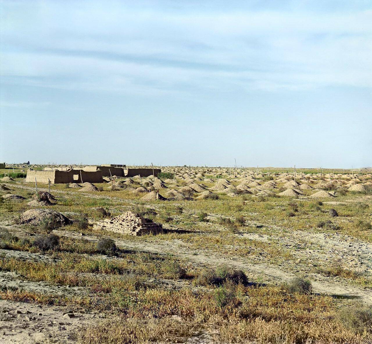 Окрестности Мерва. Близ Байрам-Али. Текинское кладбище