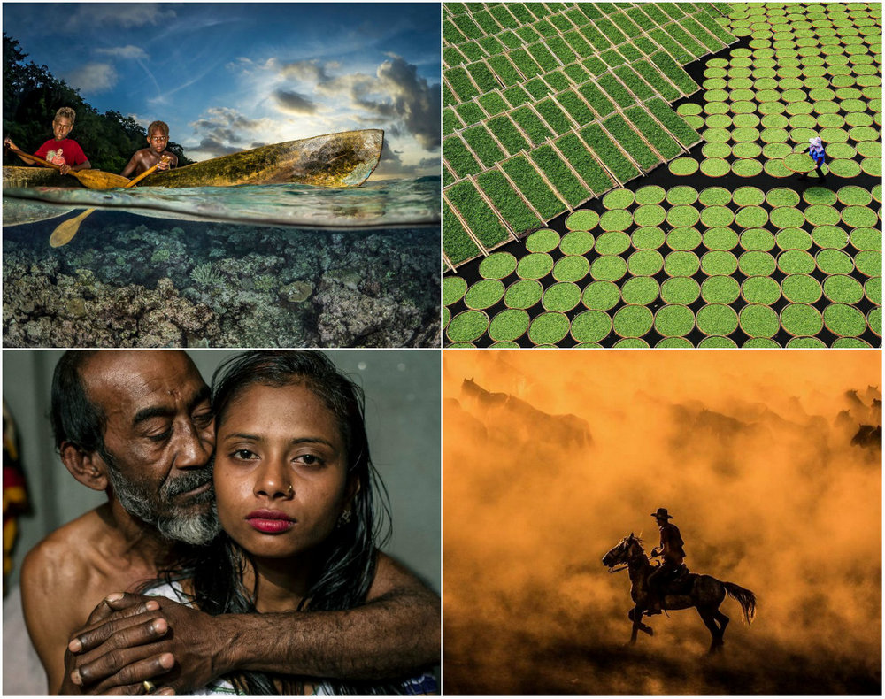 Конкурс Sony World Photography Awards 2017