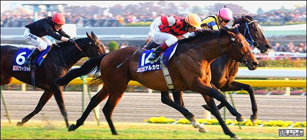 Японское коневодство, породы лошадей, конный спорт