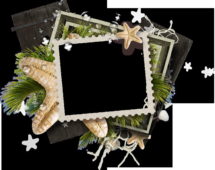marine frame
