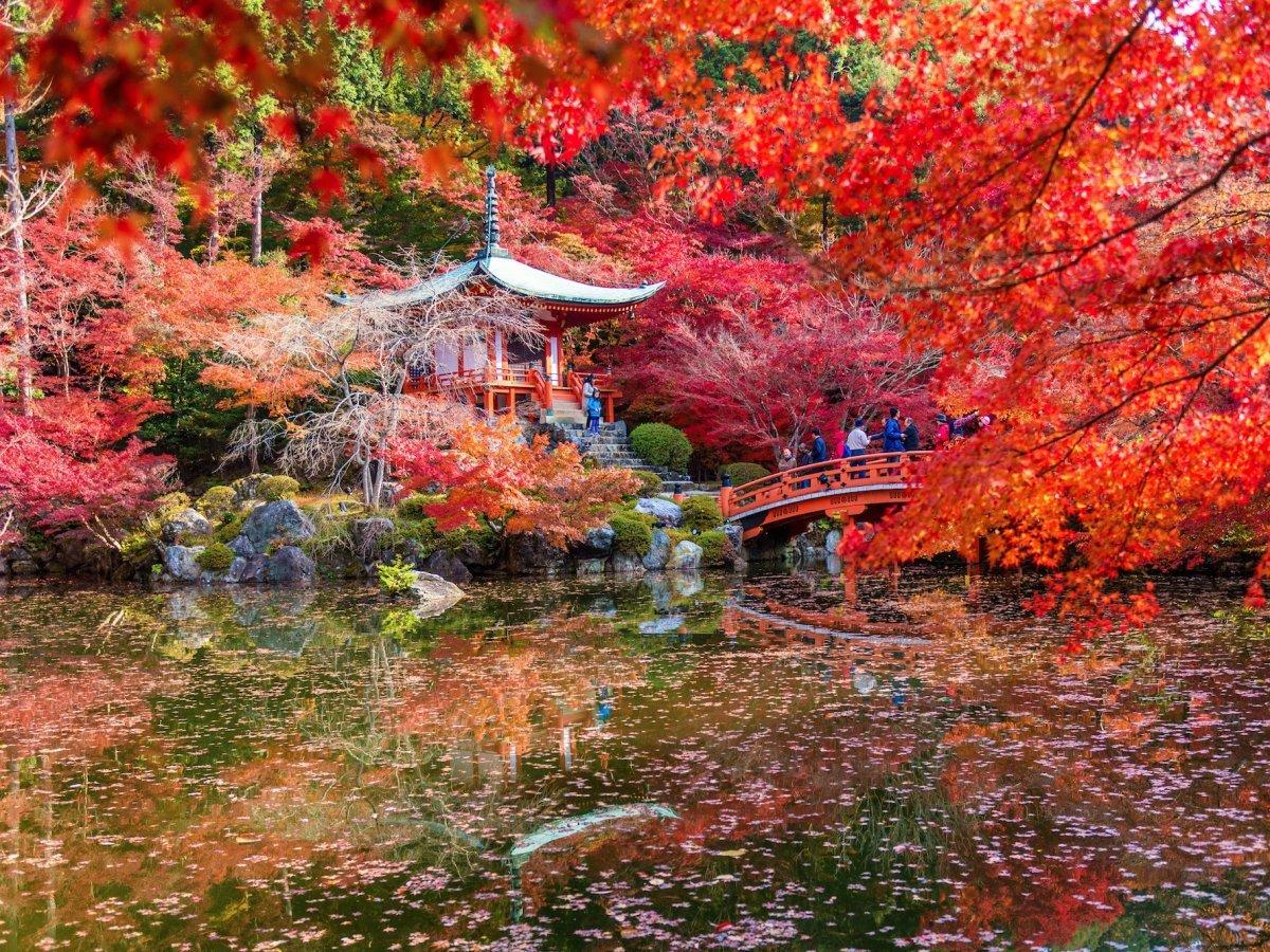 Недавно сайт Travel + Leisure назвал Киото лучшим городом в мире — рейтинг составлялся по результата