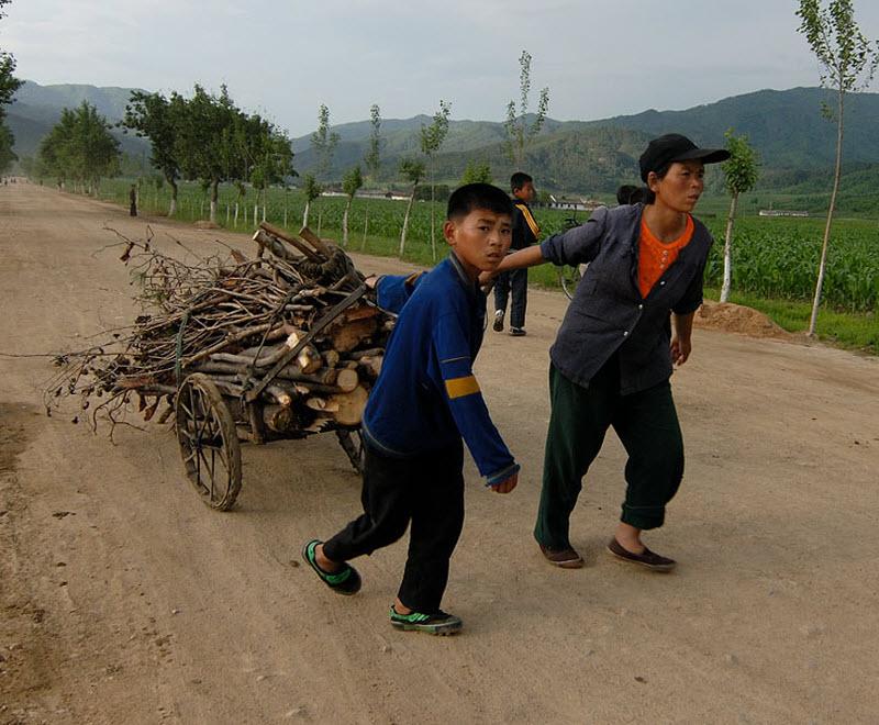 20. Вообще праздно шатающиеся юные корейцы нами замечены не были. Обычное их состояние это таскание