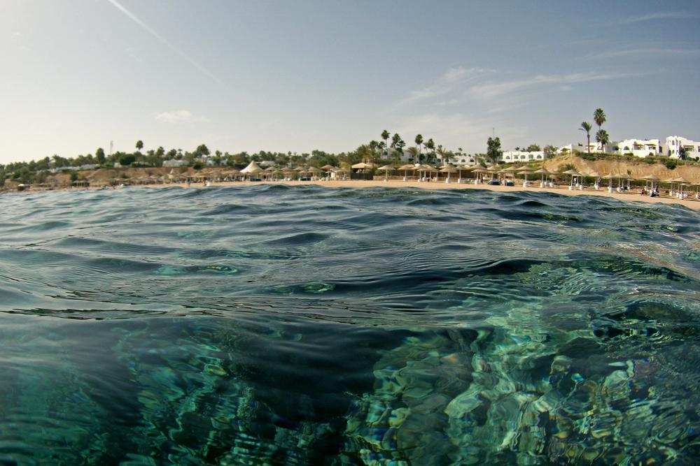 грандиозные картинки красного моря египет плече