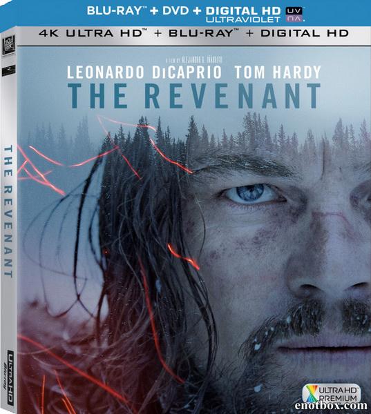 Выживший / The Revenant (2015/BD-Remux/BDRip/HDRip)