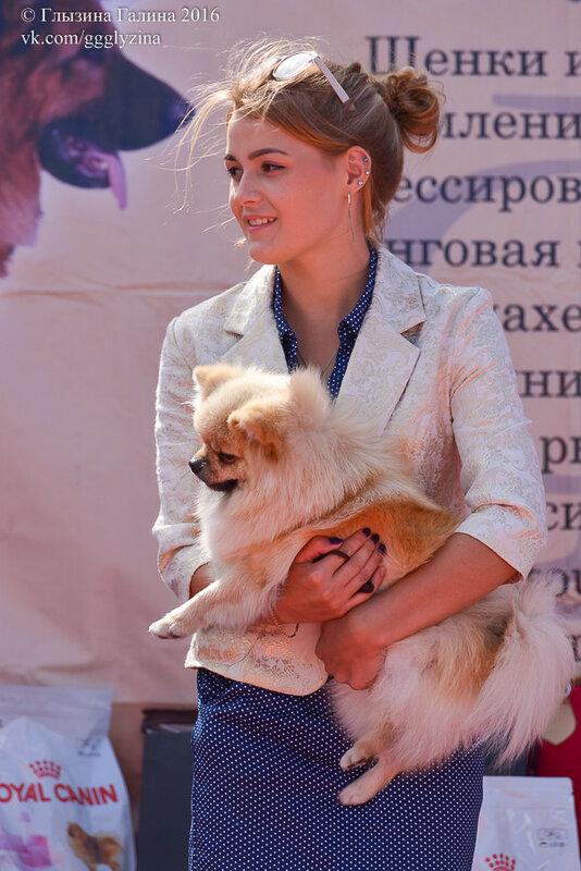 https://img-fotki.yandex.ru/get/51134/5306260.c1/0_1861a7_f5313f82_XL.jpg