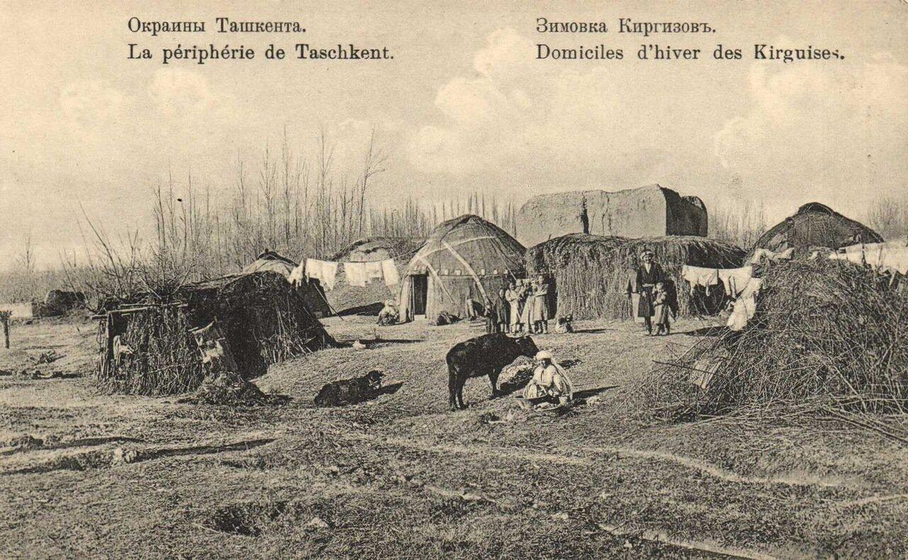Окрестности Ташкента. Зимовка киргизов