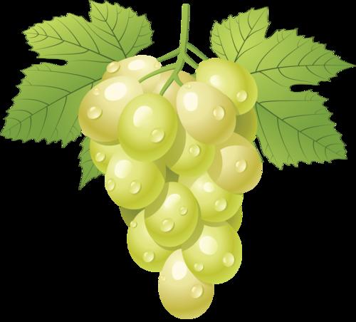 виноград (47).png